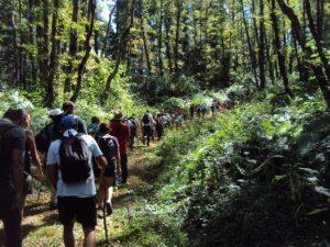 escursionisti in cammino 3