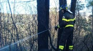 Campagna lotta incendi boschivi: la Regione Calabria sembra latitante.