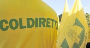 Coldiretti: Nuovo bando Inail per l'acquisto di mezzi agricoli