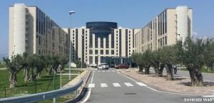 Regione Calabria – Lunedì incontro sulla carenza di medici in ortopedia e traumatologia