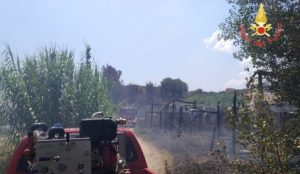 Davoli – Vasto incendio distrugge serre per coltivazione di ortaggi
