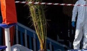 Omicidio in spiaggia, immagini della videosorveglianza al vaglio degli inquirenti