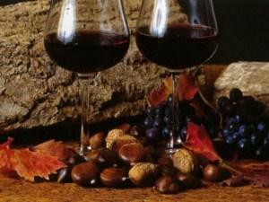 Stappato il vino novello, 20mila bottiglie prodotte in Calabria: dal Pollino allo Stretto è festa del novello