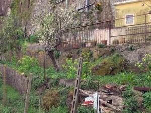 Neonato trovato morto nel giardino, rintracciata 22enne presunta madre
