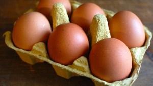 Mangiare 3-4 uova a settimana aumenta il rischio cardiovascolare, a scoprirlo uno studio