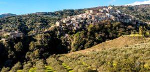 """""""Badolato day"""", il raduno a Badolato Borgo delle famiglie con cognome Badolato"""