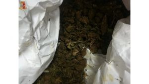 Oltre 300 grammi di marijuana nella ruota di scorta, 32enne arrestato
