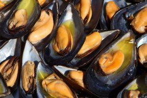 Cozze italiane allevate in mare contaminate da tossine saxitossina che causano paralisi: scattata allerta in Italia e nella UE
