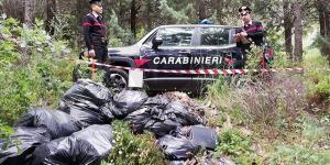 I rifiuti del supermercato gettati nel bosco, denunciati due imprenditori