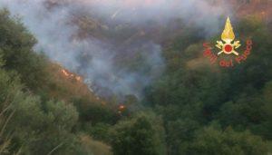 Incendio di vaste proporzioni di macchia mediterranea a Stalettì, interviene anche un Canadair