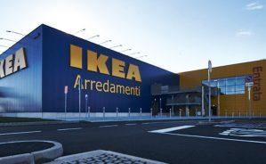 IKEA assume diplomati e laureati