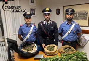 Rinvenuti sacchi colmi di marijuana, arrestati padre e figlio nel catanzarese