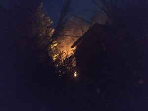 Grosso incendio nel catanzarese, distrutti tre ettari di castagneti