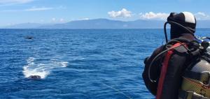 Un nuovo robot sottomarino in dotazione al Centro Strategia Marina Arpacal