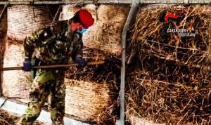 Nascondeva arsenale in una stalla, 29enne arrestato