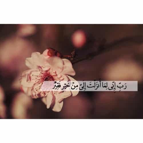 صور مكتوب عليها ايات قرآنية حلوين