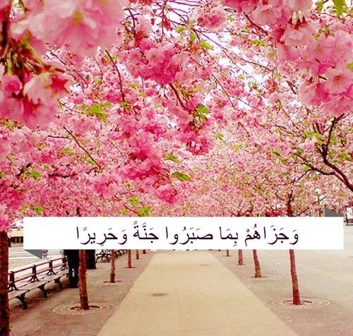 صور مكتوب فيها آيات من القرآن حلوين