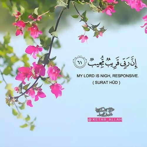 صور مكتوب فيها ايات قرآنية للأنستجرام