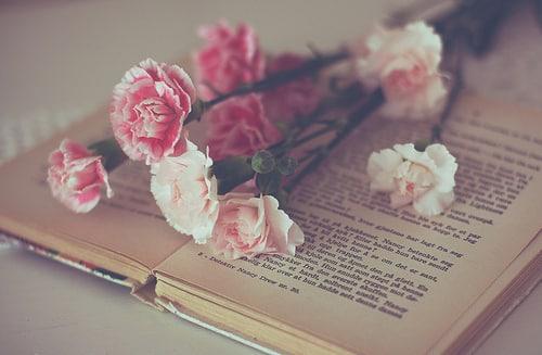 تحميل صور ورد جميل