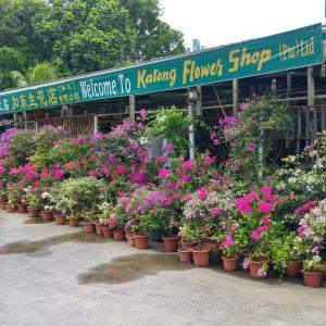 Katong Flower Shop at Tanah Merah