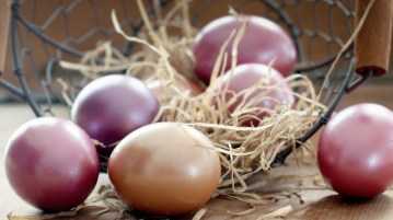 deco-recettes-oeufs-paques-swg