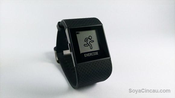 151125-Fitbit-Update-01-watermark
