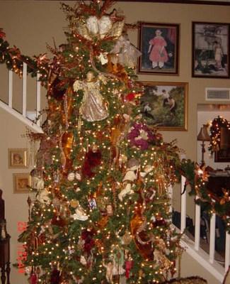 Nuestro árbol de navidad