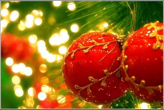 Стоян Найденов: Коледа