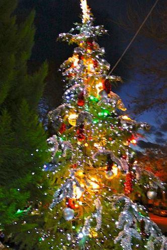 Созопол запали Коледните светлини с пищна заря