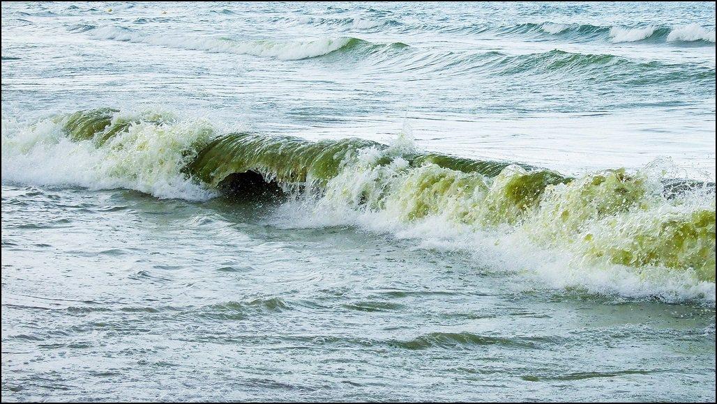 Елица Ангелова - Море, море ...