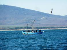 Рибарите с мауната също отплават