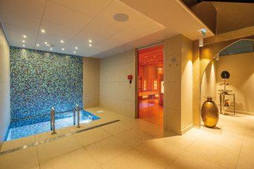 Bain froid et sauna IR