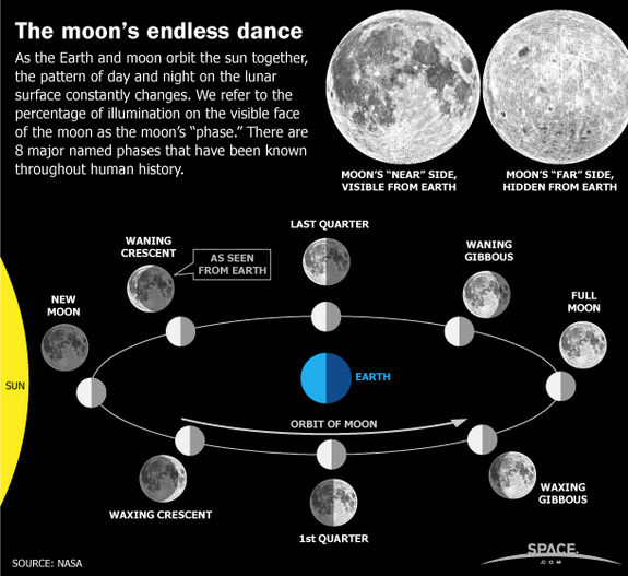 As the Earth and moon orbit the sun together, the moon goes through several phases. SPACE.com explains the 8 major named phases of the moon.