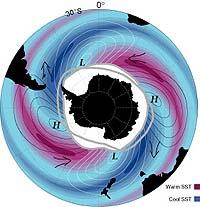 antartic circumpola rcurrent