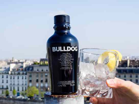 bulldog gin lifestyle photography - Nancy Da Campo