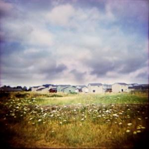 Radiance, by Kristin Giordano