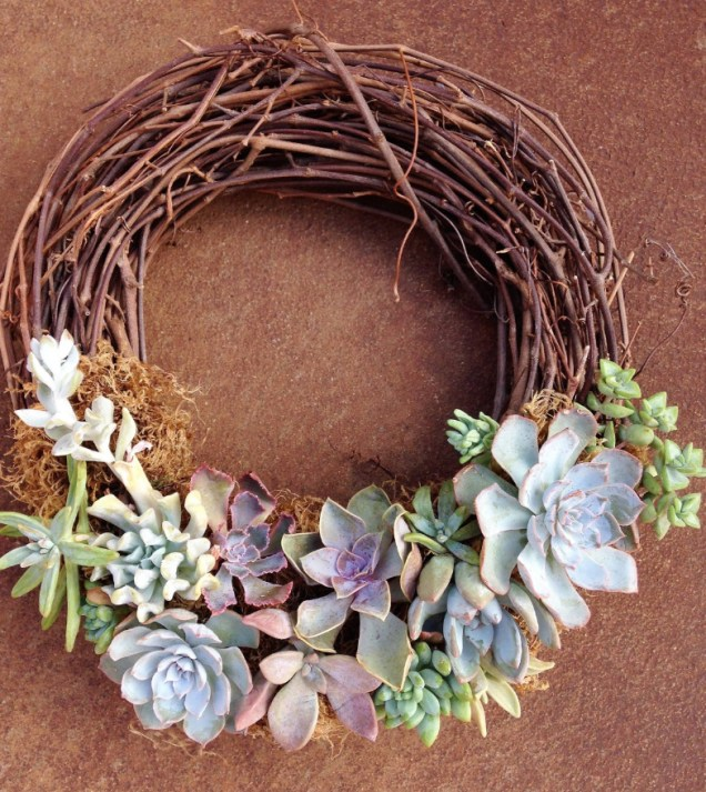 Jade & Co. Succulent Boutique by Jeanne Serrano