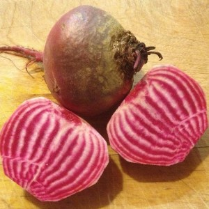 The white and red patterns make candystripe beetroot eye-catching
