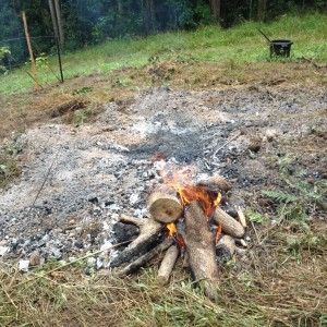 biochar burning the ends