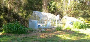 kitchen garden greenhouses