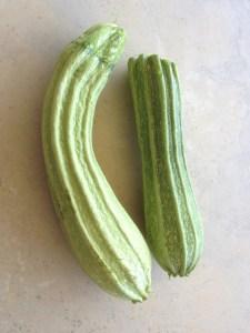 zucchini 'Costa Romanesque'