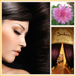 Collage-Salon