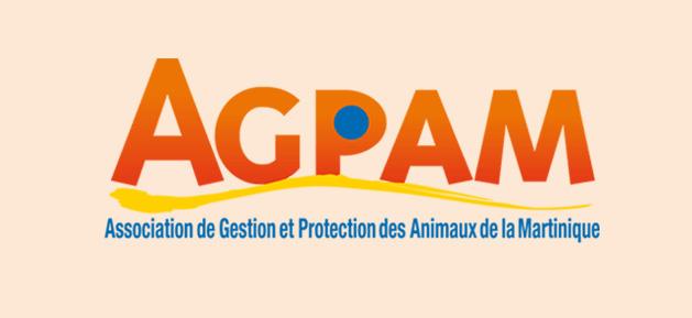 Agpam-constitution