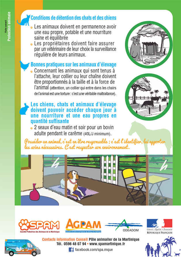 exemple-fiche-protection-02