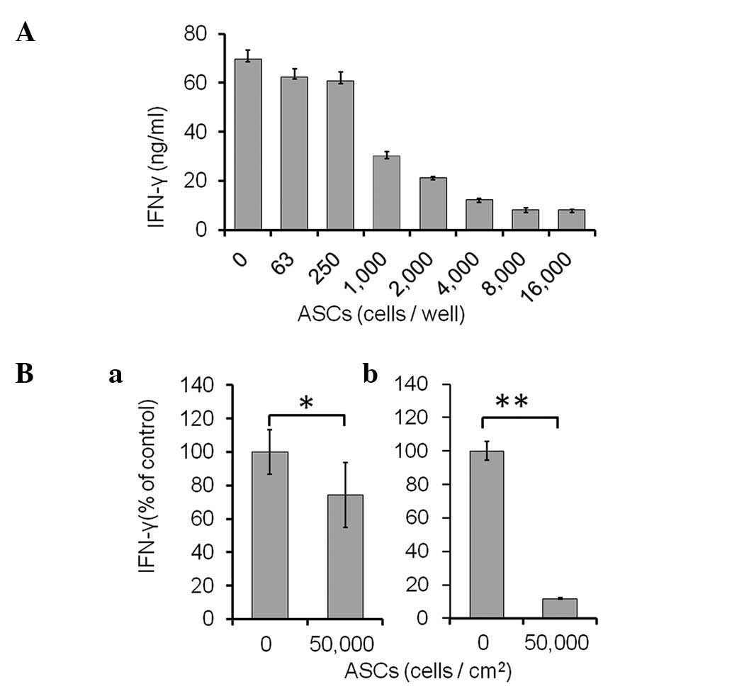 Mechanisms Of The Immunosuppressive Effects Of Mouse Adipose Tissue Derived Mesenchymal Stromal