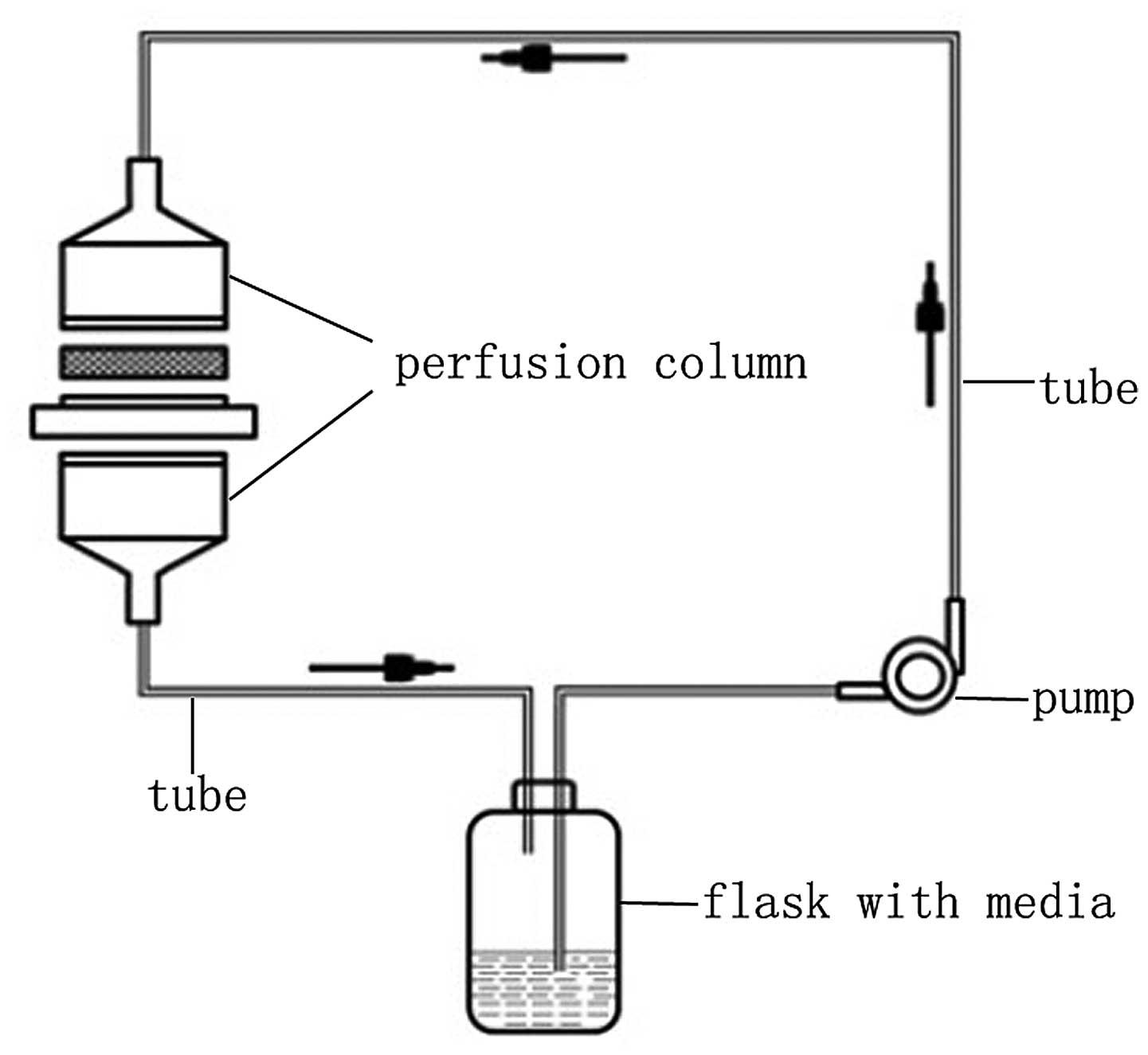 Quantitativeysis Of Factors Influencing Tissue