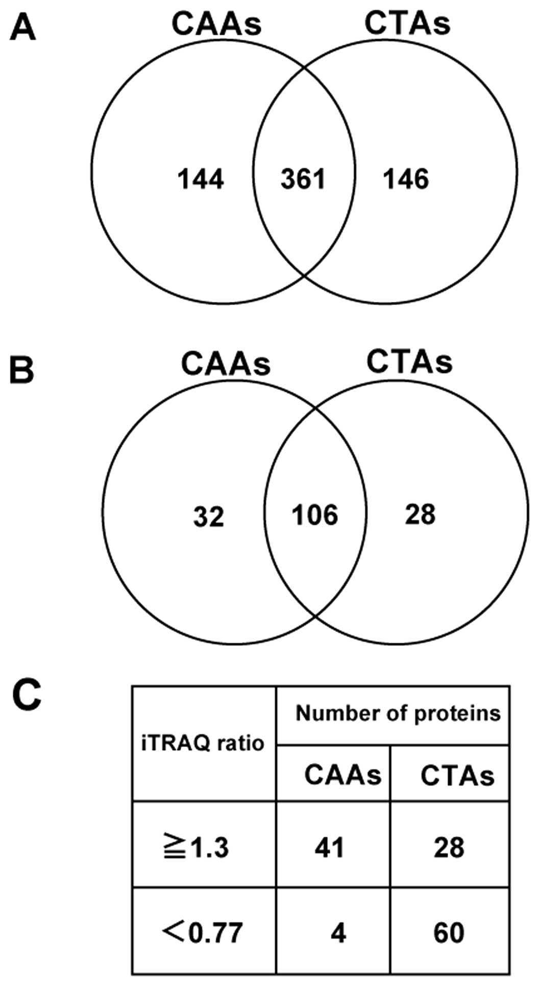 Proteomicysis Of Calcified Abdominal And Thoracic