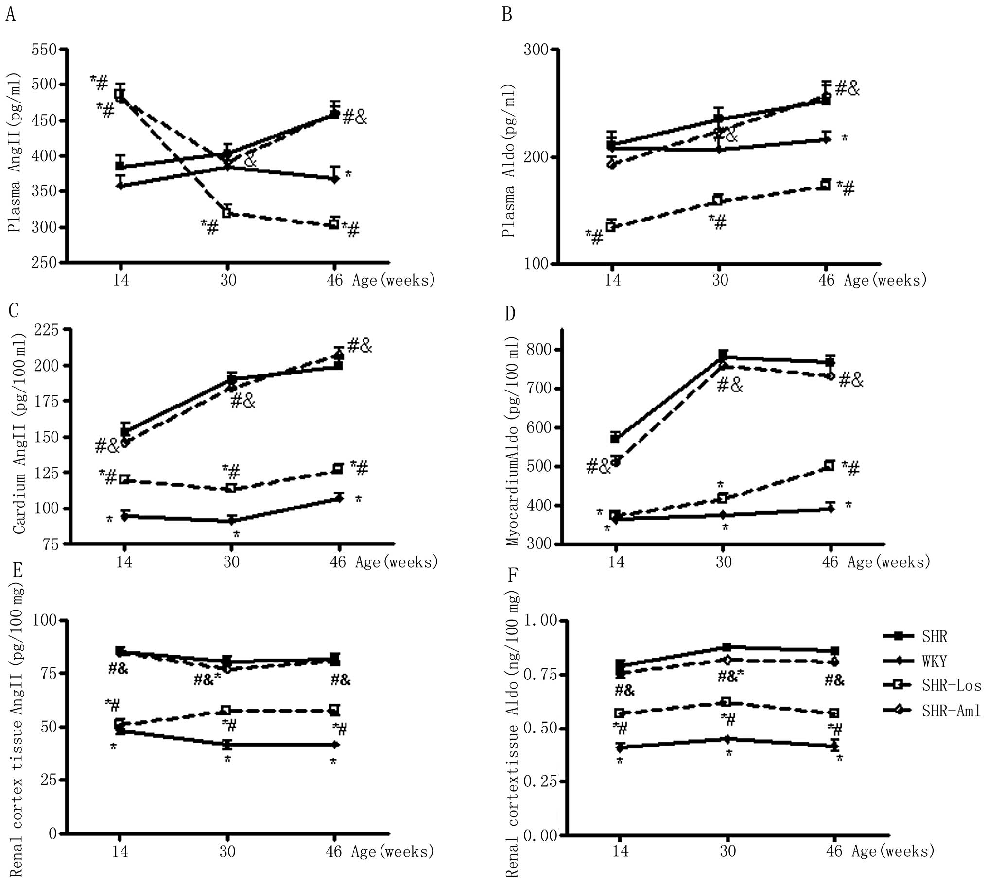 Transient Prehypertensive Treatment In Spontaneously