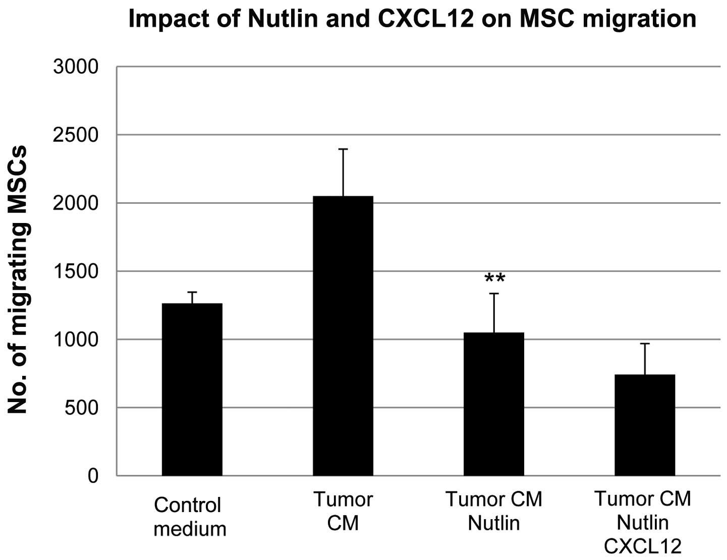 P53 Regulates The Migration Of Mesenchymal Stromal Cells In Response To The Tumor