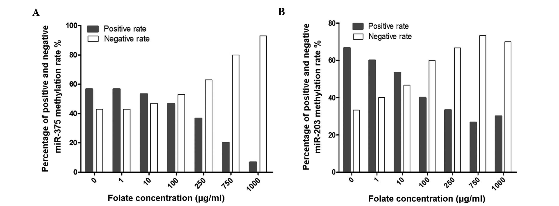 Low Folate Levels Are Associated With Methylation Mediated